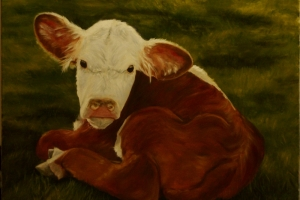 Little Bull_Mary L Datum